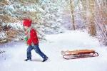 #ZimníPozadí #VánočníPozadí #Saně #MladýChlapec